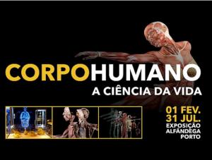 Corpo Humano – a Ciência da Vida Exposição na Alfândega (Porto) até 31.07.2019